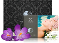 We Accept WaySpa Gift Cards